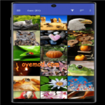 [Pro] F-Stop Gallery v5.3.2 Mod Apk For Andriod