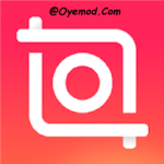 Video Editor and Video Maker InShot Mod Apk Download